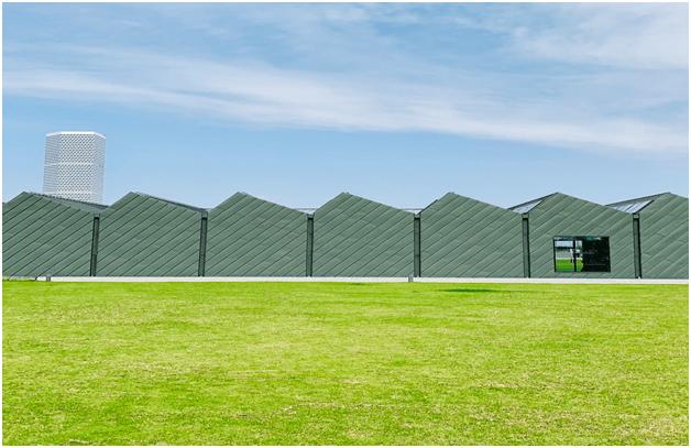 Artificial Grass for Gardens- Best Garden Ideas on a Budget