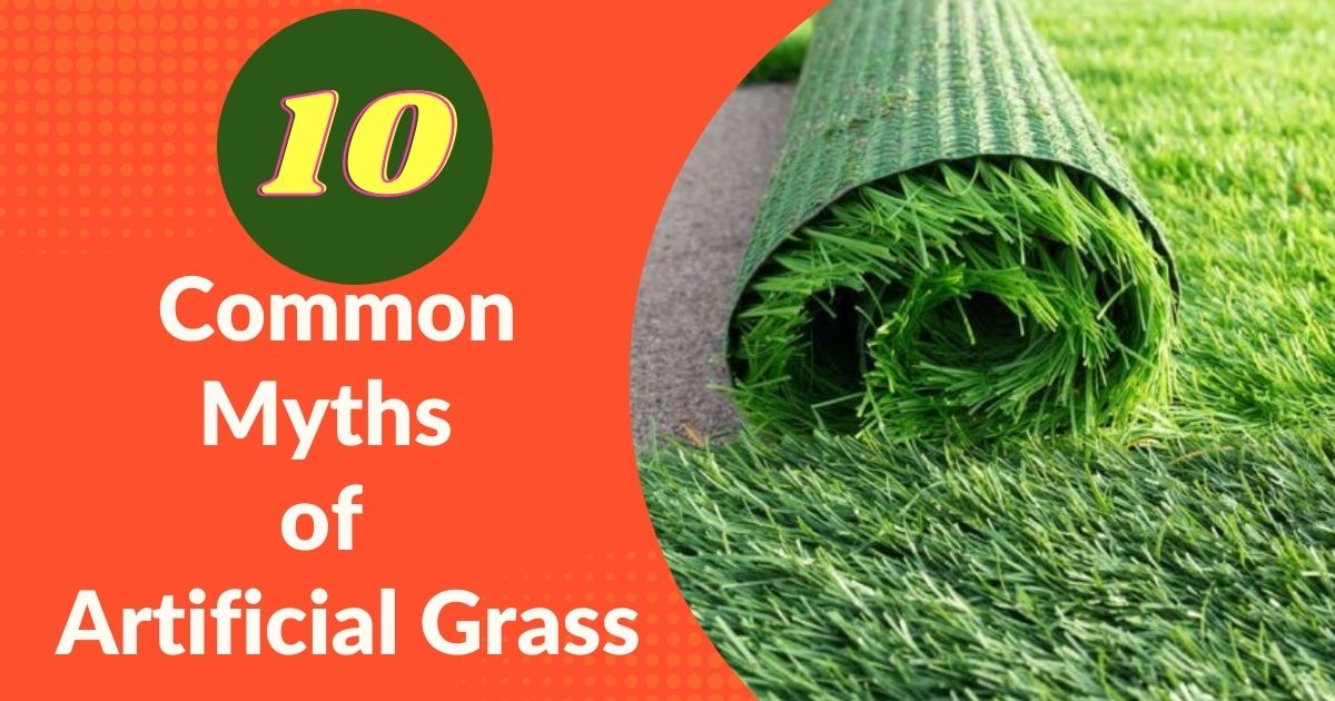 Top 10 Common Myths of Artificial Grass
