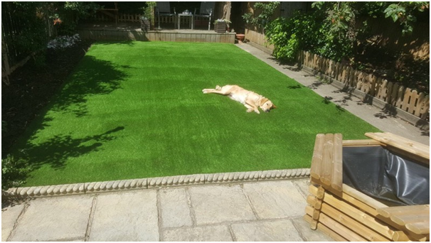 TOP 25 QUERIES REGARDING ARTIFICIAL GRASS ANSWERED BY INDUSTRY EXPERTS: PART 2